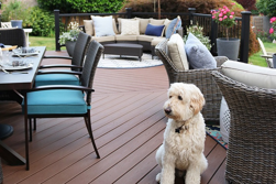 5 Need To Know Decking Tips